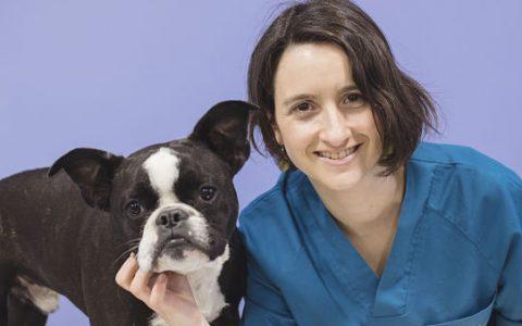 Amaia Méndez Gomendio <br> Veterinaria